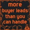 More Buyer Leads Than You Can Handle
