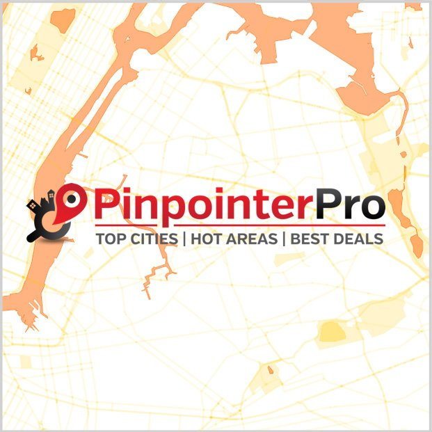 Pinpointer Pro